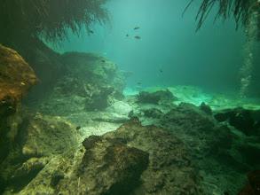 Photo: Casa Cenote