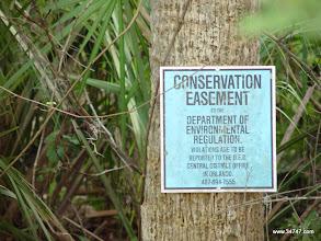 Photo: Conservation Easement, Celebration, FL