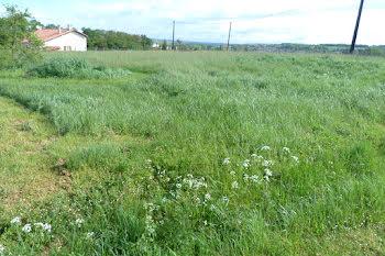 terrain à Chalais (16)