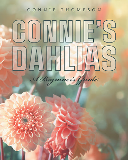 Connie's Dahlias