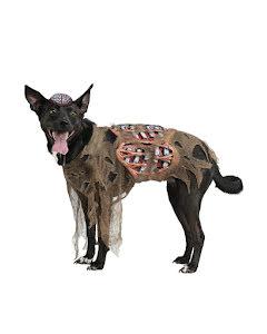 Hunddräkt, zombie