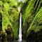 Oneonta Falls, Or (2)-2.jpg
