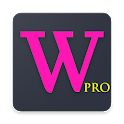 Word Master Pro: Memorize English Words YDS TOEFL icon
