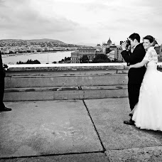 Wedding photographer Ferenc Zengő (zengoferenc). Photo of 17.04.2015