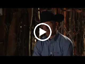 Video: Lyle Lovett, Grammy Award Winning Recording Artist and American Quarter Horse Breeder