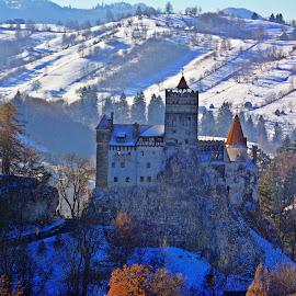 Bran castel by Ciprian Apetrei - Buildings & Architecture Public & Historical