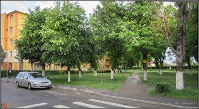 Photo: Calea Victoriei, parcul din Mr.I - 2017.05.26