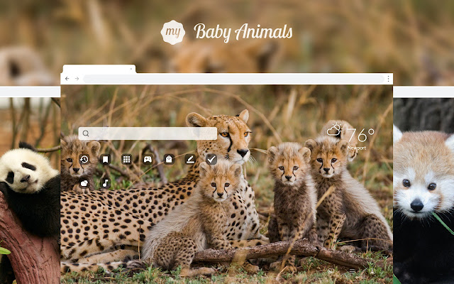 My Baby Animals HD Wallpapers New Tab Theme
