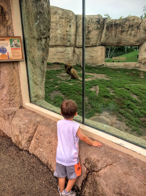 Saturday, the 27th was a perfect day for the local Racine Zoo!