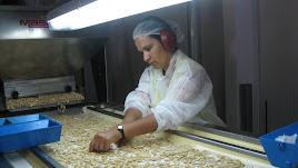 Grano de almendra procesada en una fábrica de la  provincia de Almería.