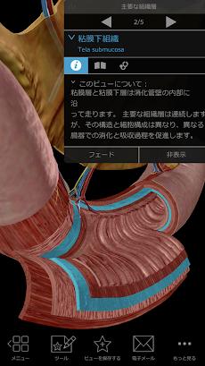 生理学と病理学:生体プロセスと疾患のおすすめ画像5