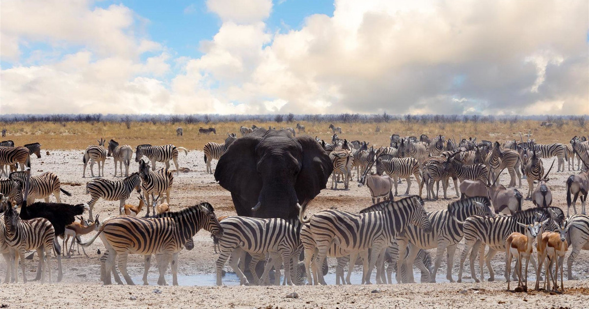 best places to visit in namibia