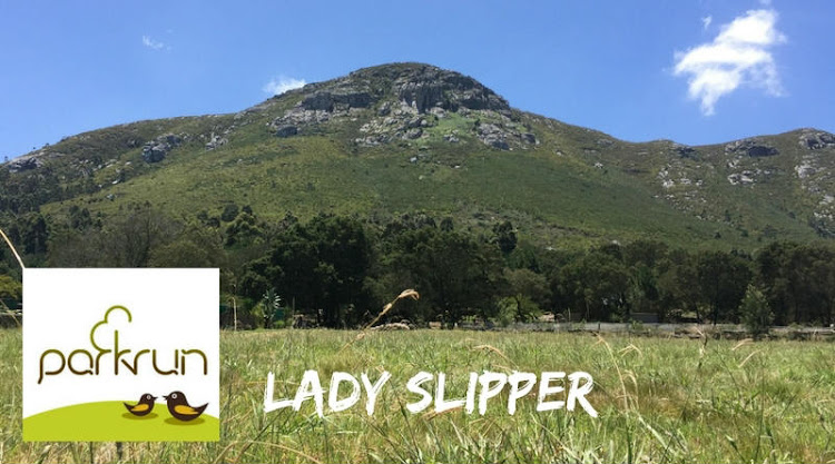 Lady Slipper parkrun is at 8am every Saturday