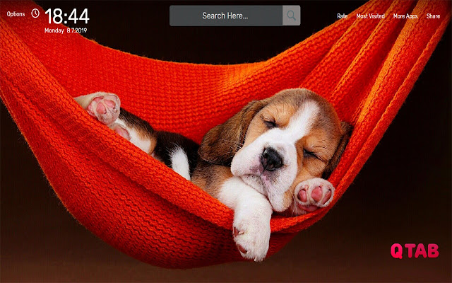 Beagle Wallpapers HD Theme
