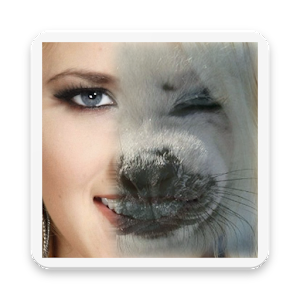 Animal Face Morphing