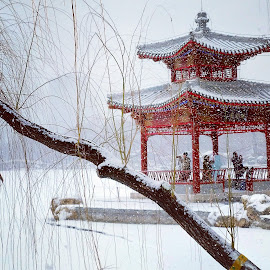 Snow pavilion by Francisco Little - Instagram & Mobile Android ( red, snow, pavilion, winter, beijing,  )