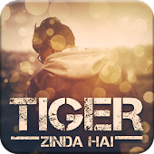 Tiger Zinda Hai Photo Frame