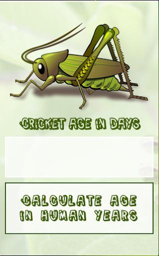 Cricket Age Calculator