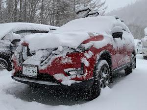 エクストレイル HNT32 20Xハイブリッド4WDのカスタム事例画像 *アクア*さんの2020年02月23日13:00の投稿