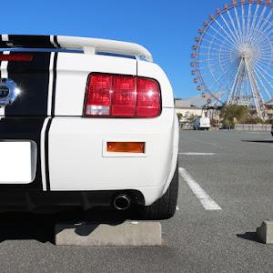 マスタング クーペ  GT Californiaspecialのカスタム事例画像 T さんの2019年01月03日18:44の投稿