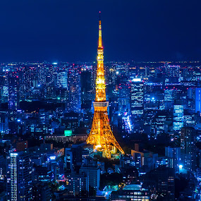 A Jewel Amidst a Megapolis  by Kazuki Nakamura - Buildings & Architecture Statues & Monuments ( building, japan, tokyo, night, tokyo tower, cityscape, city )