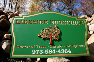 Photo: Caved & Painted Wood Signs in Minnesota & more carved signs at http://www.nicecarvings.com