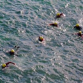 Coasteers of Cornwall by DJ Cockburn - Sports & Fitness Swimming ( england, coastline, cornwall, wetsuit, recreation, shore, coasteering, yellow helmet, water, sea, adventure, coast, swimming, atlantic, newquay, ocean, uk, action, sport, swim )