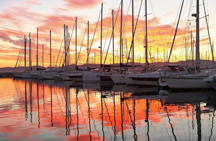 Alberi al tramonto di ANbepLO foto