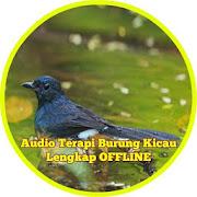 App Audio Terapi Burung Kicau Lengkap Offline APK for Windows Phone
