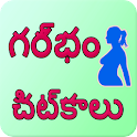 Pregnancy tips telegu icon