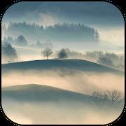 Fog Wallpapers