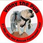Vinny the Pug - The Hero Icon