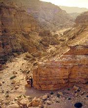 Photo: nei dintorni del Mar Morto