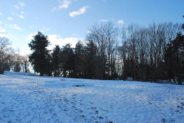 snowy wood di simo_Flash94