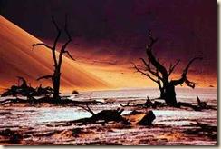 48-desert-extremes