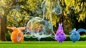 Bubbles thumbnail