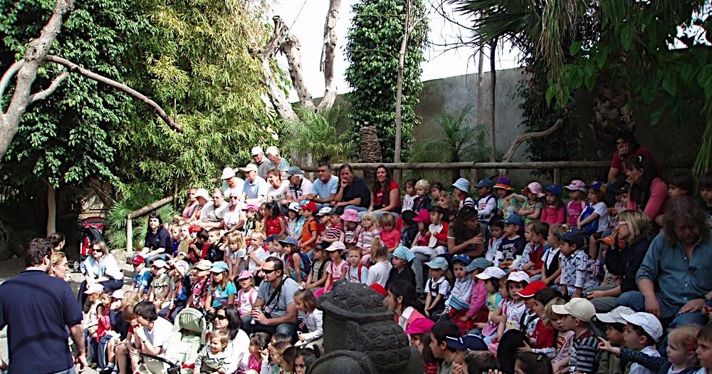 C e i p jard n bot nico la cala de mijas visita al zoo for Ceip jardin botanico