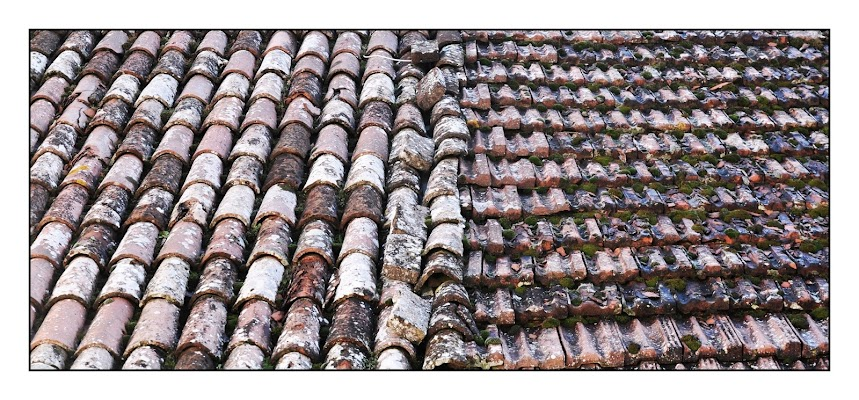 Shingles di Germano