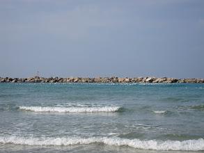 Photo: Birds at the beach