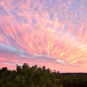 Pink fire Sunset by Ty Shults - Landscapes Sunsets & Sunrises ( sky, purple, blue, sunset, pink, painted sky, water tower, fire,  )