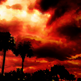 Storm in Red by Edward Gold - Digital Art Things ( digital photography, red sky, tree silhouette, storm clouds, digital art,  )