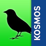 App Icon for Birds of Europe: Identification, habitat, calls App in Czech Republic Play Store