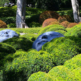 Faces & bushes by Eugen Opritescu - Nature Up Close Gardens & Produce ( bushes, france, faces, normandie, etreta )