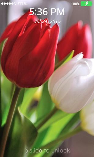 Lock screen Wallpaper: Tulip|玩個人化App免費|玩APPs