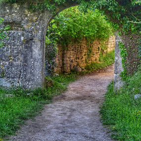 by Natalie Zvonar - Buildings & Architecture Decaying & Abandoned ( path, abandoned,  )