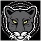 Jaguar Web Rádio Download on Windows