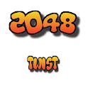 2048 Twist Custom