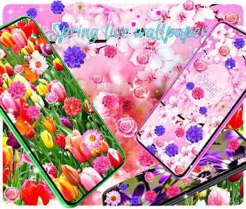 Spring live wallpapers Apk  Download For Android 1