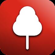 Forest News - Fan App