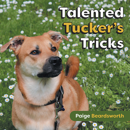 Talented Tucker's Tricks